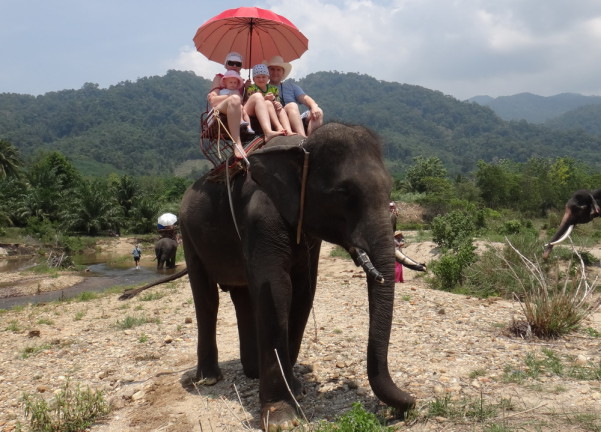 Мы на слоне в Тайланде