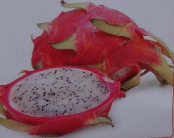 drakon-frukt