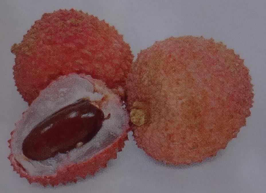 фрукты тайланда названия и фото